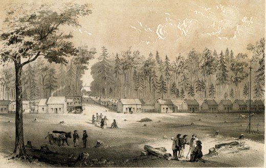 The Colony in 1865