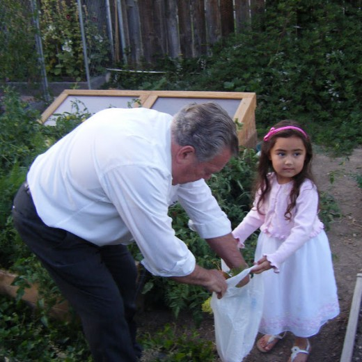 My dad in his garden with one of my granddaughters.