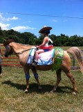 Halloween Fun With Horses