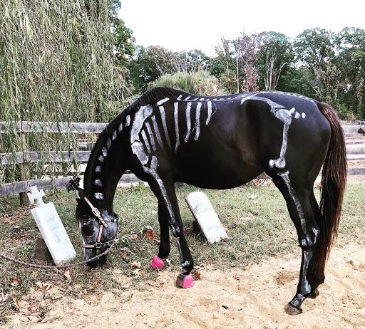Zoe in her skeleton costume last year!