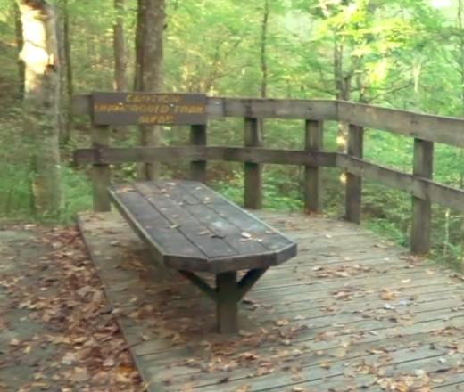 Fall Hollow Falls Overlook