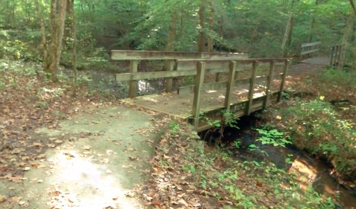 Well maintained trail to the falls