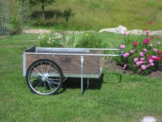 A Classic Garden Cart