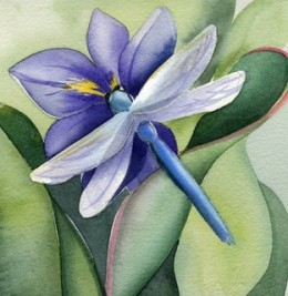 Watercolor by Amy Hautman http://amyhautman.blogspot.com/2008/04/blue-dragonfly.html