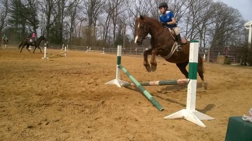 You can teach an old horse new tricks!