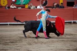 Stop Bullfighting