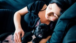 You Haven't Heard of These Surprising 5 importance of Sleep From Your Pet