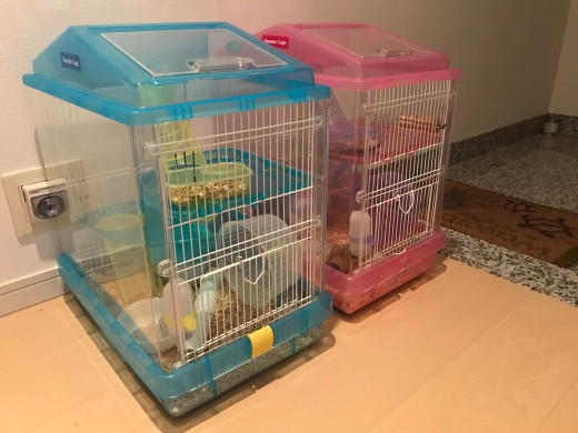 Two IRIS Hamster Cages in blue and pink
