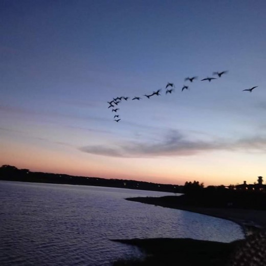 Relaxing evening with friends at a lake in Arlington TX where the Cowboys stadium is located (a mile down the street)