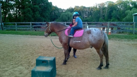 My lesson horses can always count on a treat after their lessons.
