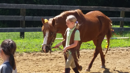 My horses gentle nature assures that they will always be safe and always have an important role to play in our program.