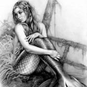 Mel Visser profile image