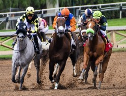 Help on How to Win Money at Horse Racing