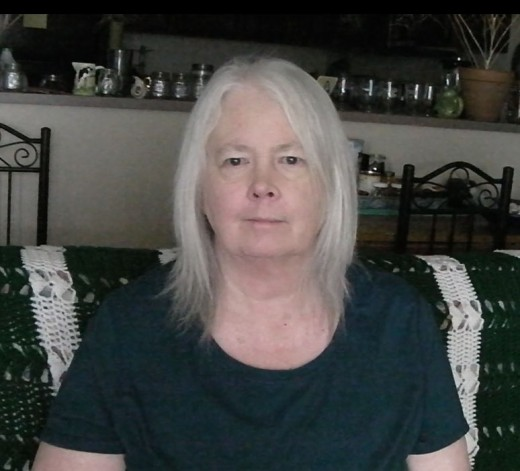 Book Lady, Linda Jo Martin, during a 2018 video shoot.
