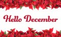 December: Interesting Things About the Month