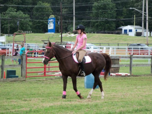 """Dublin had been out of work for years when he became mine and I took him to my house and turned him into a lesson horse. You can teach an old """"dog"""" or horse new tricks."""