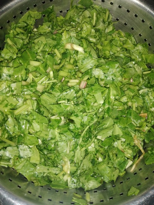 Wash and remove hard stems of spinach.  Sprinkle some salt, rinse and drain well.