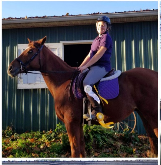 Evaluate your year with horses? Did you have goals? Did you accomplish them?