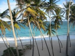 Highlights of the Seven Wonders of Barbados