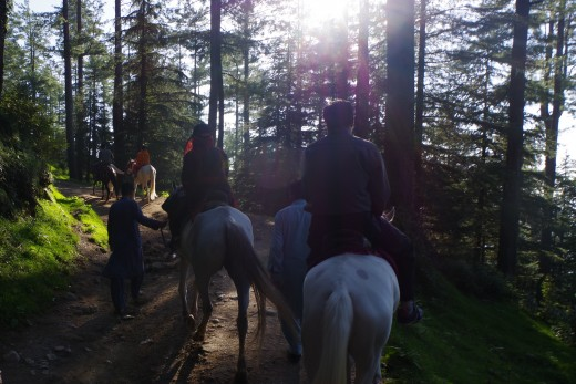 Horse riding can be thrilling on narrow tracks.