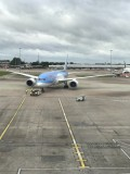 TUI Boeing 787 flight to Florida review