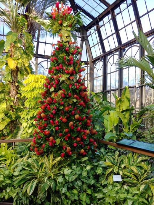 This tree is in a tropical room, and all of its ornaments are tropical fruits, seeds and flowers.