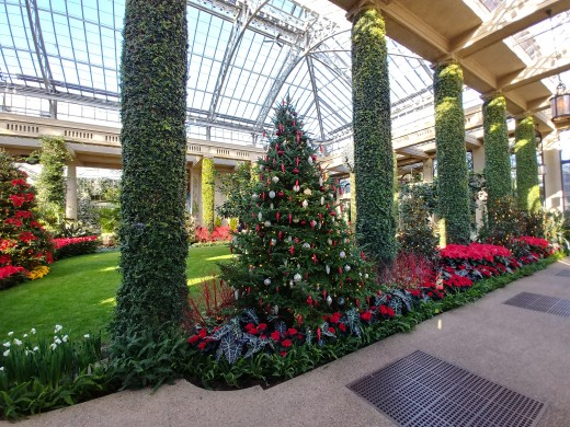 At Longwood Gardens, there is a tree color for everyone.