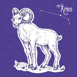 7 Reasons to Date an Aries