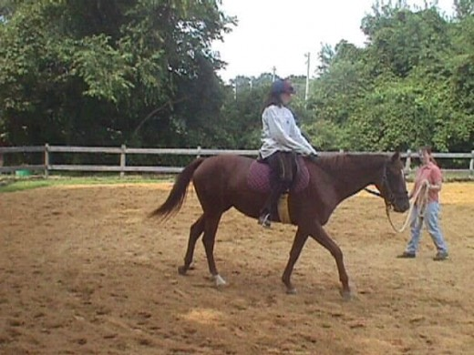 This photo is of my mare on the first day she ever had a person on her back! Kind of different situation but cool picture.