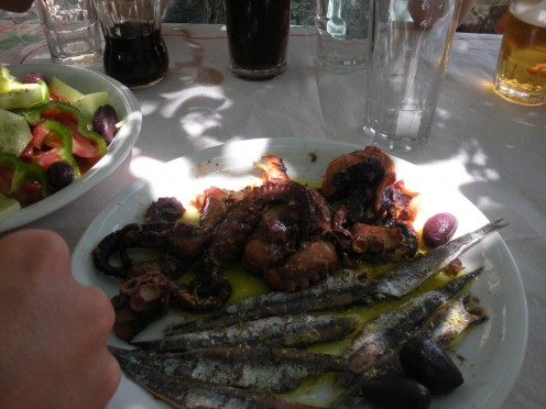 Octopus and small fish, that were surprisingly very good! Even to those that had never had anything like it before.