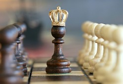 Our Servant King: A Political Satirical Poem