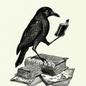 Writing Ravens profile image