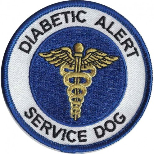 This badge alerts others to the handler health condition