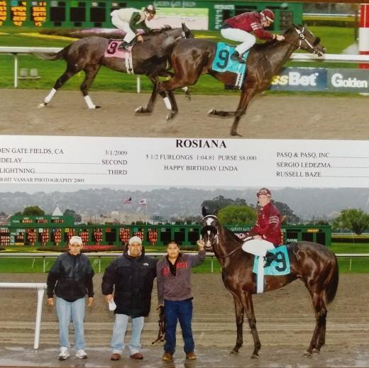 Racehorse Zoe