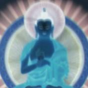 kung fu_librarian profile image