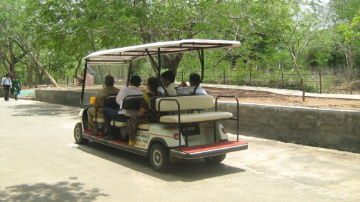 Electric car to go around Vandalur Zoo