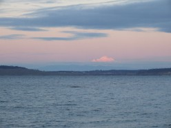A distant view of Mt. Baker, Washington state