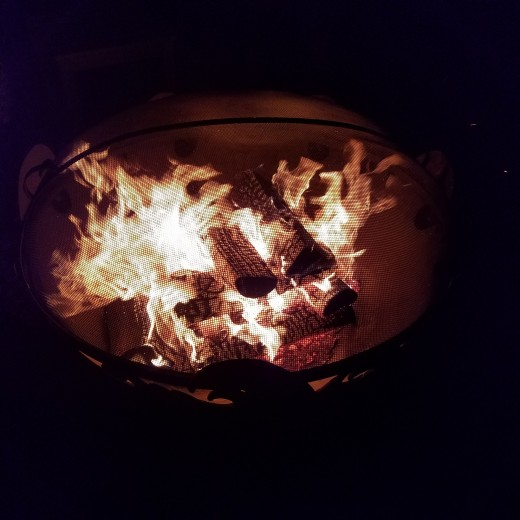 Singing and storytelling by a bonfire, while sipping cocoa or wassail, is a wonderful way to welcome in 2019.