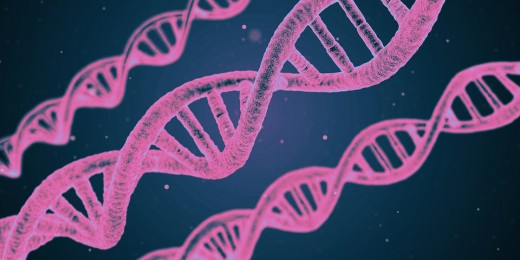 You have the right to know what's in your DNA, especially if you have a family history of hereditary diseases.