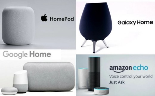 Other Smart Speakers