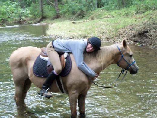 Trail horse Cory
