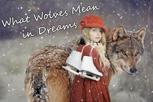 How to Interpret Dreams About Wolves