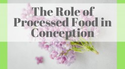 The Role of Processed Food in Conception