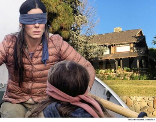 Sandra Bullock stars in Bird Box