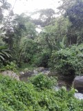 Rawacala Eco Park - Honduras