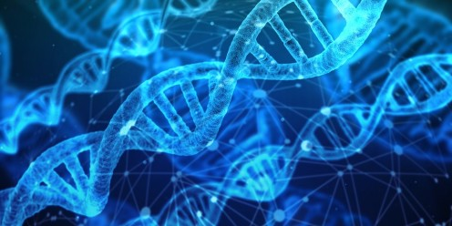 Facts You May Not Have Known About Your Dna and Biological Connections to Ancestors