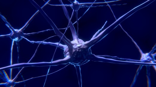 No, brain-cell formation doesn't stop after adulthood.