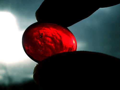 """""""You take the red pill—you stay in Wonderland and I'll show you how deep the rabbit hole goes."""" Morpheus"""