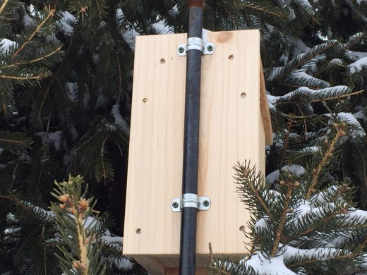 I use half-inch pipe straps for securing the nest box to the iron pipe.