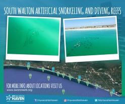 Artificial Snorkeling Reefs Along the Emerald Coast